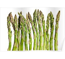 Asparagus Isolated On White Background Poster