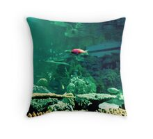 Little Fish in a Big Blue World Throw Pillow