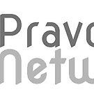 Pravox Networks [Old Logo] by Brandon Giesing