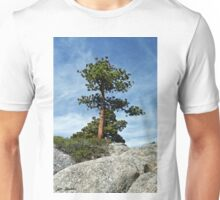 Ponderosa Pine and Granite Boulders Unisex T-Shirt