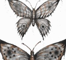 butterfly collector  Sticker