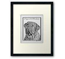 Dogue De Bordeaux French Mastiff by Leslie Berg Framed Print