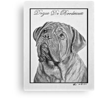 Dogue De Bordeaux French Mastiff by Leslie Berg Canvas Print