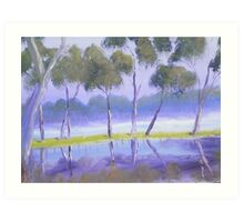 Red River Gums on the mashlands of the Murray River Art Print