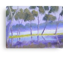 Red River Gums on the mashlands of the Murray River Canvas Print