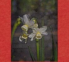 Daffodil Glow Tri-blend T-Shirt