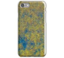 The Van Gogh Moment iPhone Case/Skin
