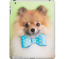 Cute Pomeranian with a ribbon iPad Case/Skin