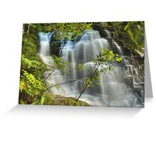Sylvia Falls ... After The Storm Greeting Card