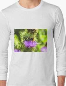 bee on thistle with insects Long Sleeve T-Shirt