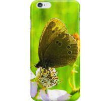 Wild butterfly on a flower iPhone Case/Skin