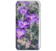 Soft Focus Crocus iPhone Case/Skin