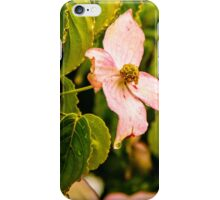 Flower Crying iPhone Case/Skin