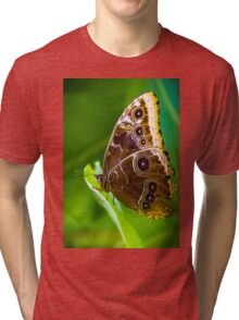 butterfly brown colour with red spots, butterfly on a leaf Tri-blend T-Shirt