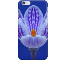 Violet Striped Crocus iPhone Case/Skin