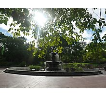 Summer Sun Through the Leaves at Bethesda Terrace Photographic Print