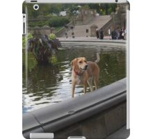 Cooling Off in Bethesda Fountain iPad Case/Skin
