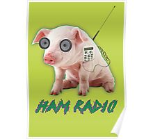 Ham Radio Poster