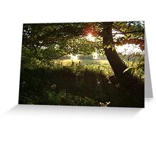 A LATE SUMMER SUNSET IN RURAL DEVON Greeting Card