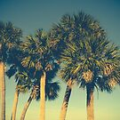 Palm Trees by Olivia Joy StClaire