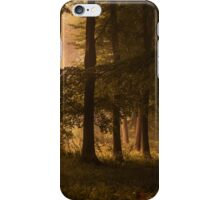 Kingswood iPhone Case/Skin