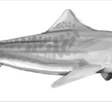 Tiger shark greyscale Sticker