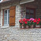 Provence Cottage by phil decocco