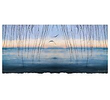 Winter's Arrival Over Lake Ontario  Photographic Print