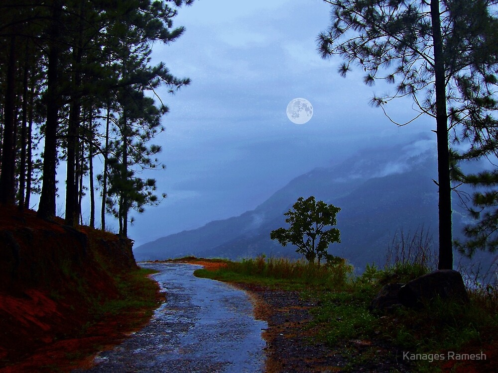 An Ode to a Moonlit  Night! (please see description) by Kanages Ramesh