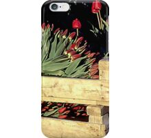 Box of Spring iPhone Case/Skin