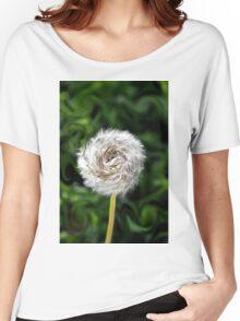 Furry  Pinwheel  Women's Relaxed Fit T-Shirt