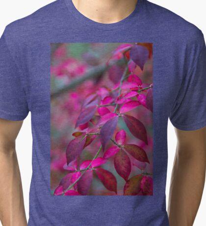 Autumn Pink And Purple Tri-blend T-Shirt
