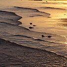 Golden Tide by Bo Insogna