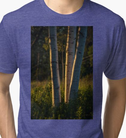 Natures Glow Tri-blend T-Shirt