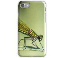 Banded Demoiselle dragonfly iPhone Case/Skin