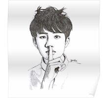 pencil sketch soo Poster