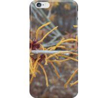 Witches of EastOhio iPhone Case/Skin