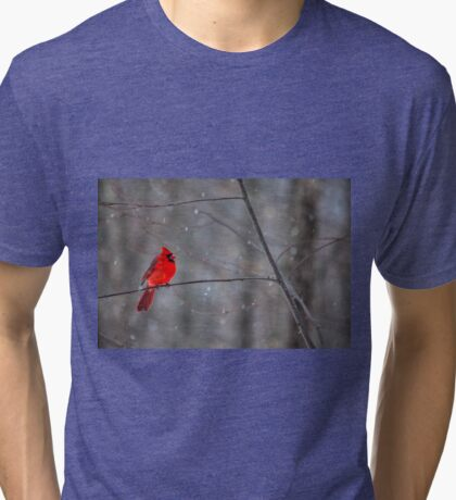 Cardinal In The Snow Tri-blend T-Shirt