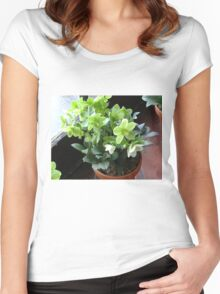 Green Blossoms Women's Fitted Scoop T-Shirt
