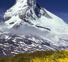 The Matterhorn with Alpine Meadow in Foreground Sticker