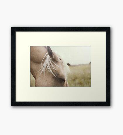 Savannah Framed Print