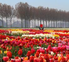 Show Garden Tulip Festival Sticker