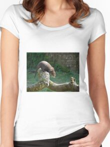Asian Small-clawed Otter Women's Fitted Scoop T-Shirt