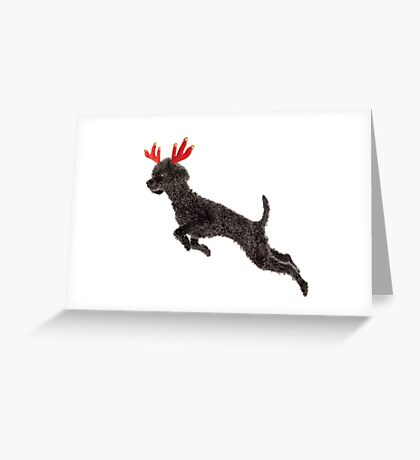 Black Poodle Christmas Reindeer with Red Antlers Greeting Card