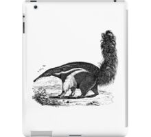 Vintage Anteater Illustration Retro 1800s Black and White Image iPad Case/Skin