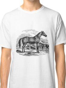 Vintage Arabian Horse Illustration Retro 1800s Black and White Equestrian Image Classic T-Shirt