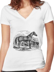 Vintage Arabian Horse Illustration Retro 1800s Black and White Equestrian Image Women's Fitted V-Neck T-Shirt