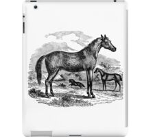 Vintage Arabian Horse Illustration Retro 1800s Black and White Equestrian Image iPad Case/Skin