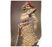 Ornstein the Dragonslayer Poster