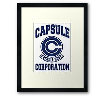 capsule Framed Print
